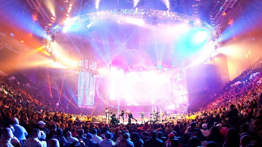 World Wrestling Entertainment Inc